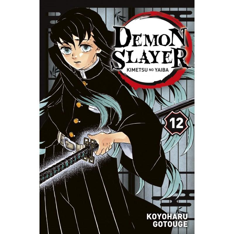 DEMON SLAYER T12 - Manga au prix de 6,99€