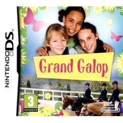 DS GRAND GALOP - Jeux DS au prix de 2,95€